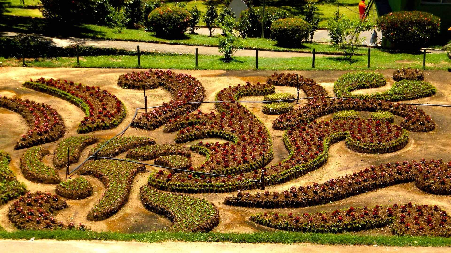 The Golden Ridge - Hakgala botanical gardens