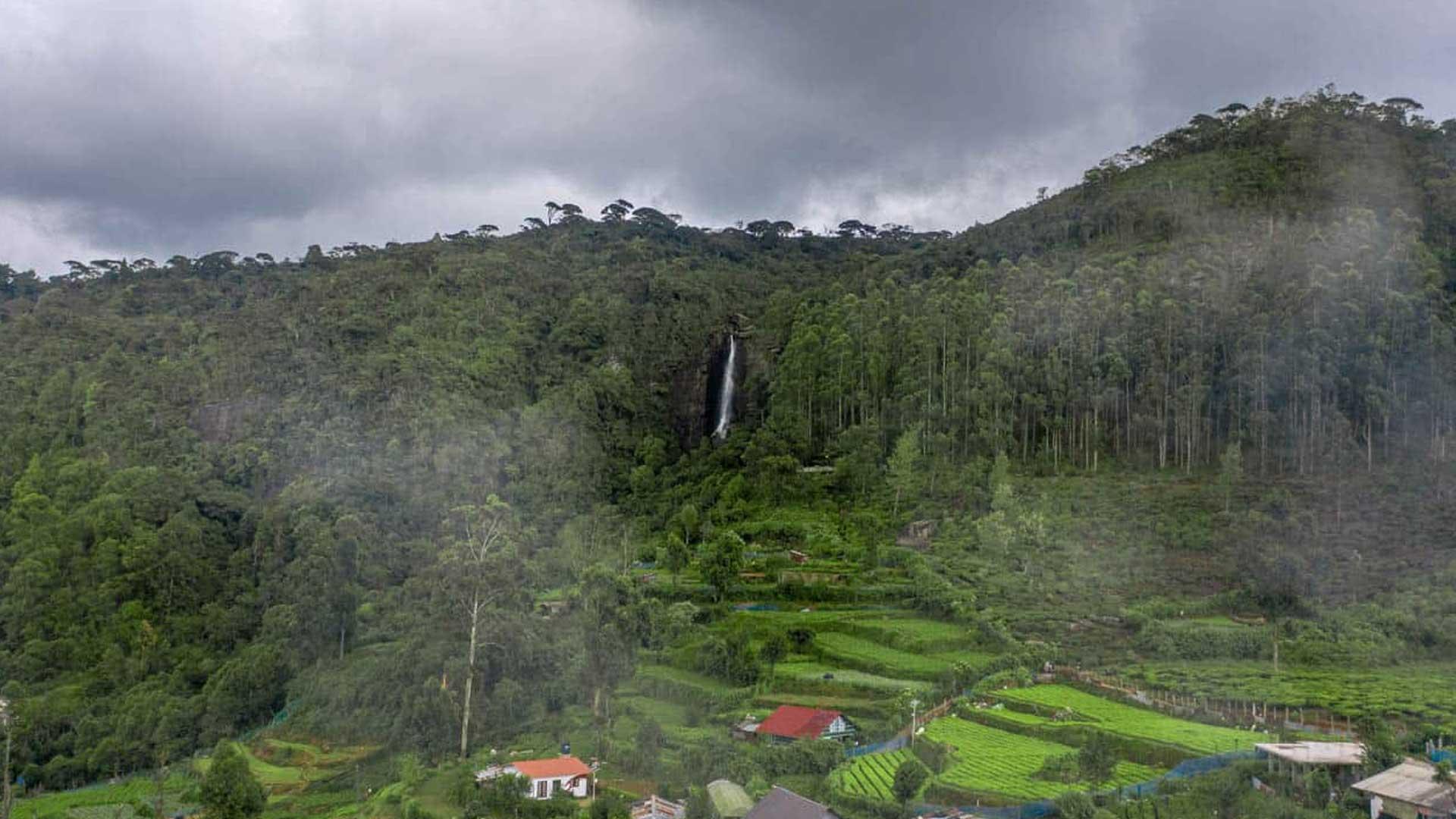 The Golden Ridge - Lovers leap waterfall